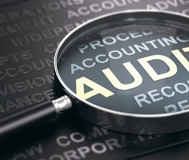 Financial Auditing